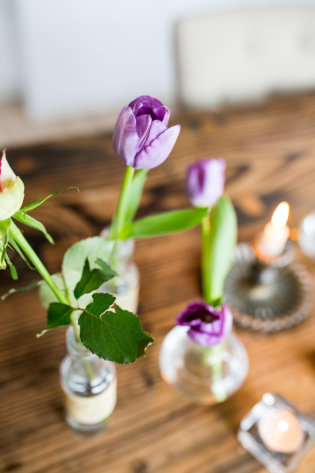 tulipan-3