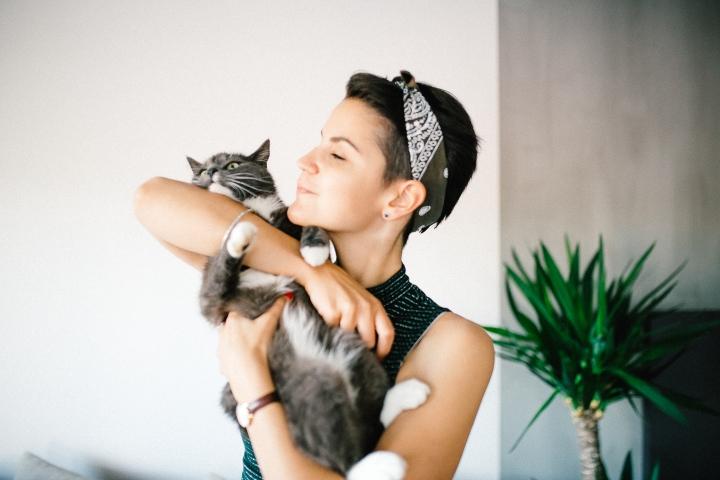 catlife2
