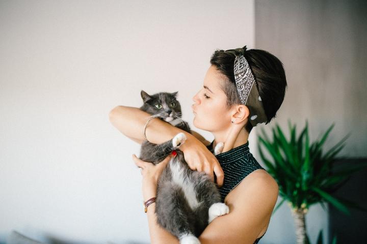 catlife3